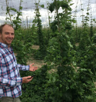 Interview with Michael Ferguson, hops breeder in E-Brida